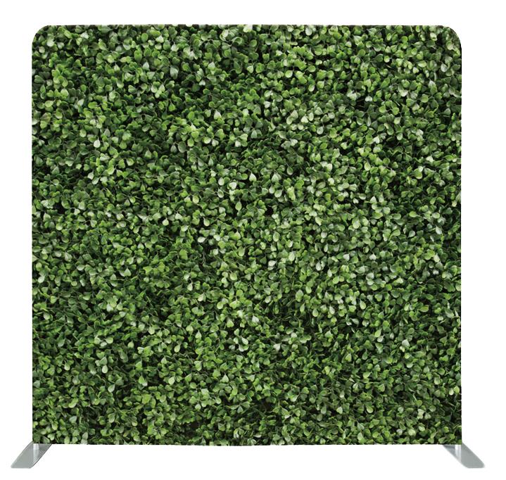 Green Ivy 10x8
